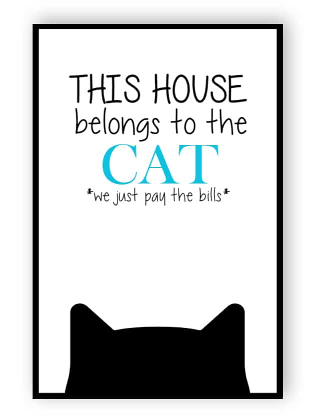This house belongs to cat sign